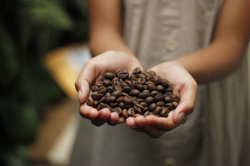 За кафето, отпадъците и чашите. Как да бъдем по-отговорни към опазването на околната среда без да се отказваме от любимата напитка?