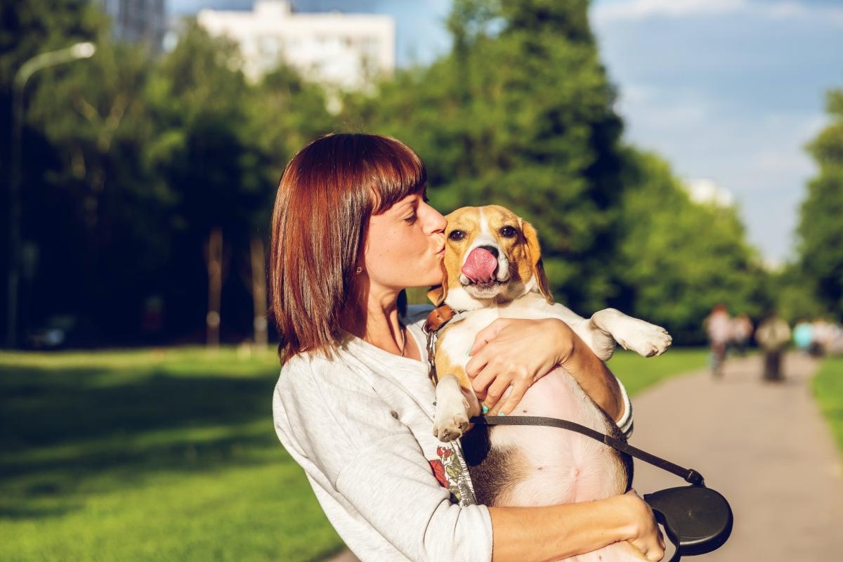 Как да отглеждаме куче в градска среда с Нулев Отпадък?